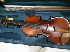 Taile Violin